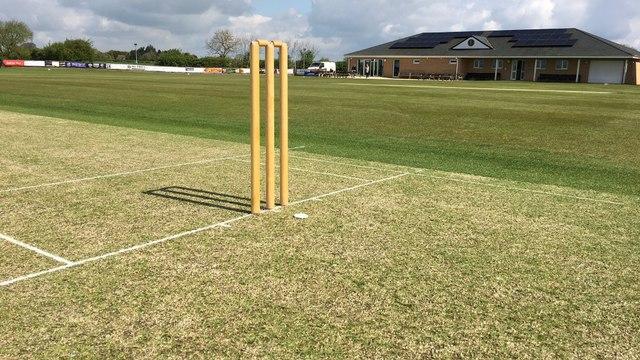 Senior Cricket 2021 - Spring Update