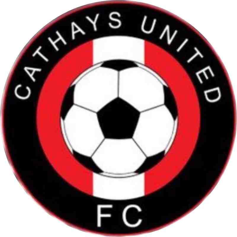 Cathays United Logo