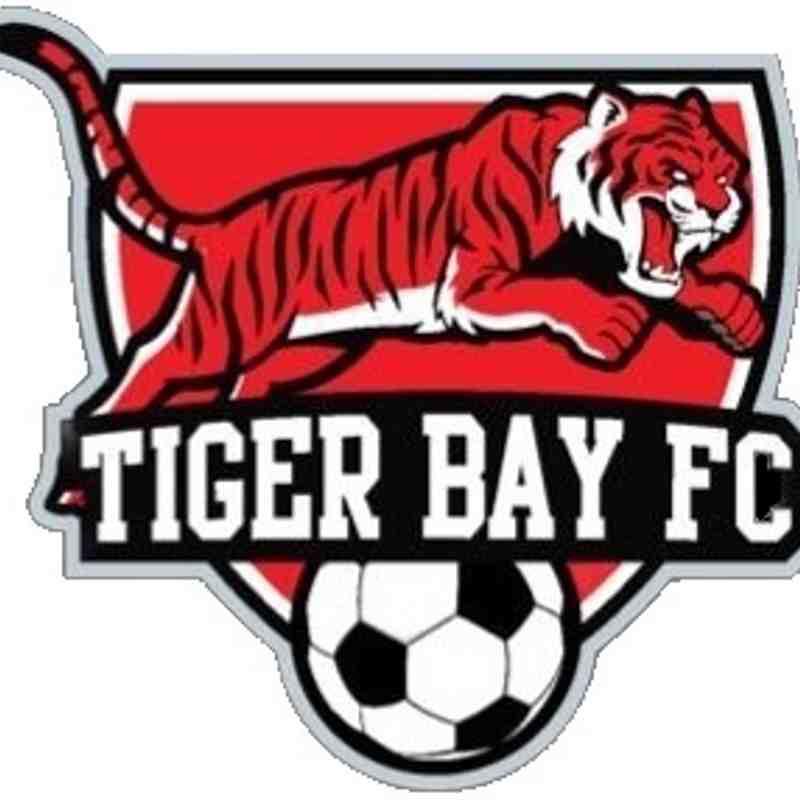 Tiger Bay Logo