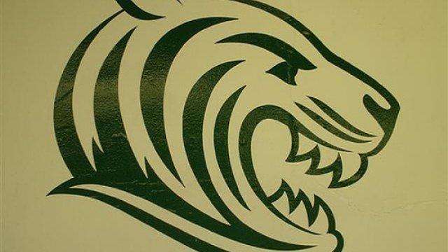 Long Eaton Tigers (U12's)