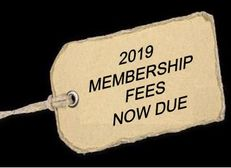 Senior Rugby Subscriptions 2019-20