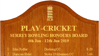Surrey Honours Boards