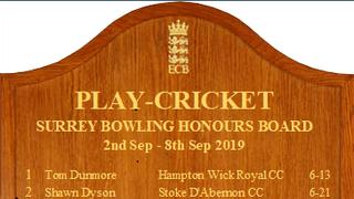 Surrey Honours Boards 2019