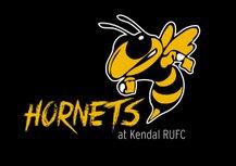 U10 Hornets