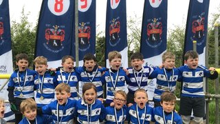 Maldon Under 7s finish off first year of matches with a successful trip to Sudbury.