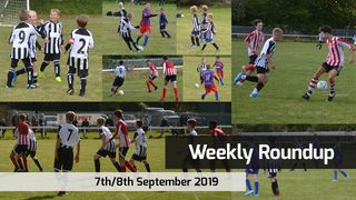 Swifts Weekly Roundup: September 7th/8th 2019