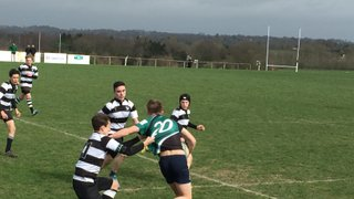 U15s League Match away to  Pulborough RFC