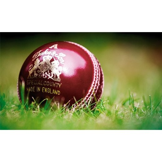 Netting Cricket Ball