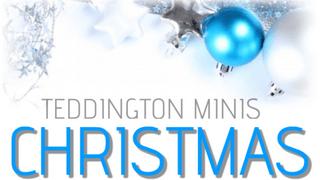 Minis Christmas party 2014