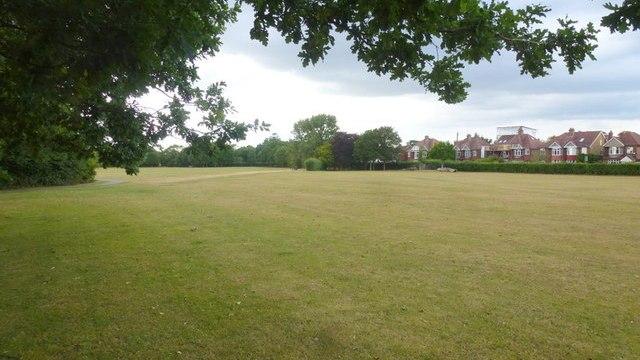 Hampton Common Pitch Consultation