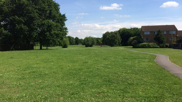 Hampton Common: re-consultation on proposed creation of new football pitch