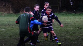 Aston Old Edwardians v SRFC Under 10s, 8 March 2015