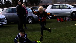 SRFC Under 10s v Bees, Sunday 22 March 2015