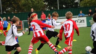The Harlow Town Youth Teams By Heather Square