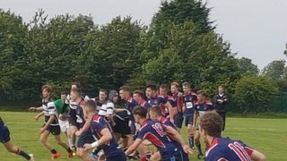 Colts on the road in National Plate Quarter Final