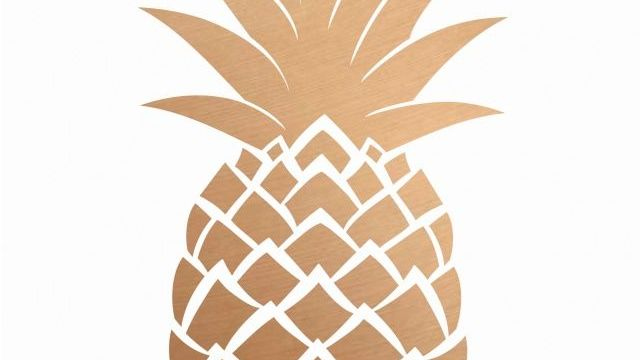 """Club Day 31 Aug 2019 - """"Hunt for the Golden Pineapple"""""""