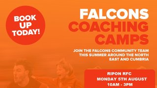 Falcons Coaching Summer Camp