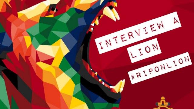 Interview a Lion