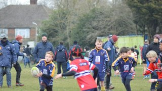 U10 Stags @ Middlesex Festival 15/3/15