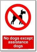No dogs are allowed at ERRFC