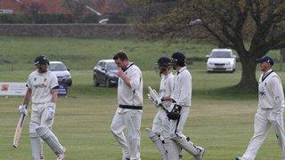 Wellington CC 1st XI v Himley 1st XI 30-04-16