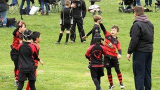 Telford Hornets Junior Festival 2019