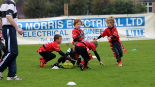 Wrexham U8s at Mold Tournament 11/10/2015