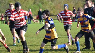 Rugby photos