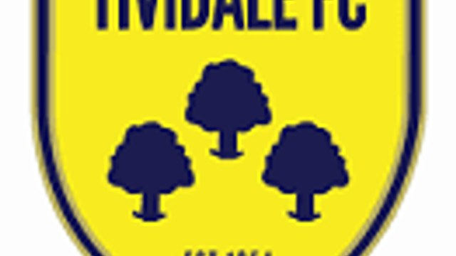 FIRST TEAM   Sat 30 Oct   Away   TIVIDALE   MFL Premier Division