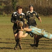Colts at the top of their game and demolish Worcester