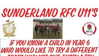 Sunderland RFC U11's