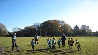 Training - U7- 11/11/12