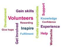 Volunteering Opportunities for Everyone