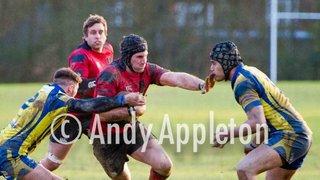 1st XV v Basingstoke (Feb 2013)