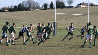 U14s take the wind out of Royston's sails