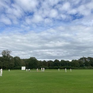 Bradshaw the game-changer as Westgate beat Windermere by three runs in dramatic fashion