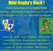 Mini Rugby's Back !!