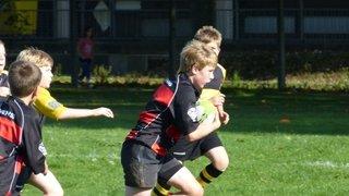 Fareham Heathens U12s @ Chichester Tournament