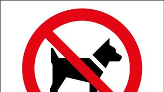 *NO DOGS ON LMS PLAYING FIELDS*