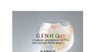 Gingo - A Night of Gin and Bingo