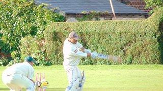 Player Profile - Neil Harvey