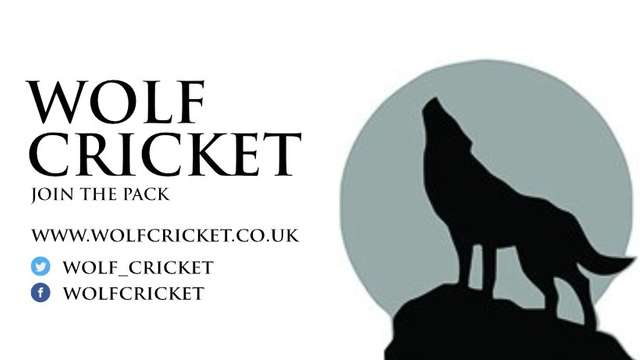 Wolf Cricket become Stump Sponsor for 2020 season