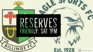 Reserves in Friendly Action Tomorrow
