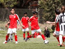 Training information - Boys U8 to U12 teams