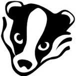 U17 (Year11 & 12) The Ricky Badgers