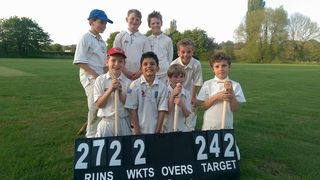 Junior Cricket plans for 2019
