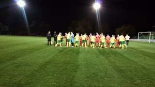 Holmesdale defeat Premier League opposition