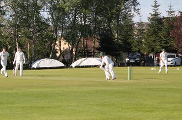 54 for 6 - Myles Coughlan edges Tyron to Kev Mountford to be caught behind.