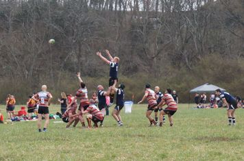 Kramer in the line out