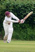 Fielding and Bowling Pressure Prove Too Much For Waltham After Stimpson and Hardy Fifties